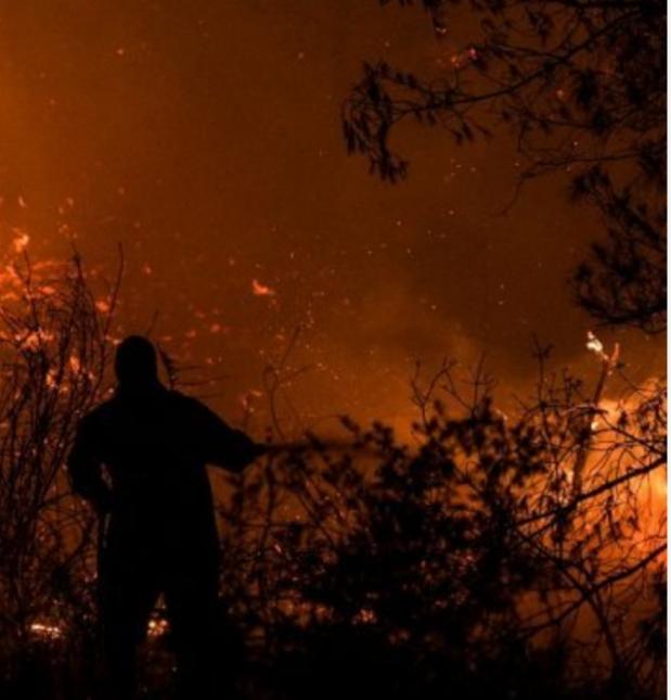 ΤΩΡΑ: Μεγάλη δασική πυρκαγιά στο Πήλιο