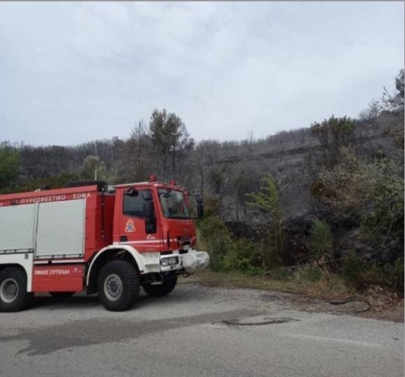 Μεσσηνία: Κινητοποίηση της Πυροσβεστικής για δασική πυρκαγιά στην περιοχή του Κάκκαβα Τριφυλίας