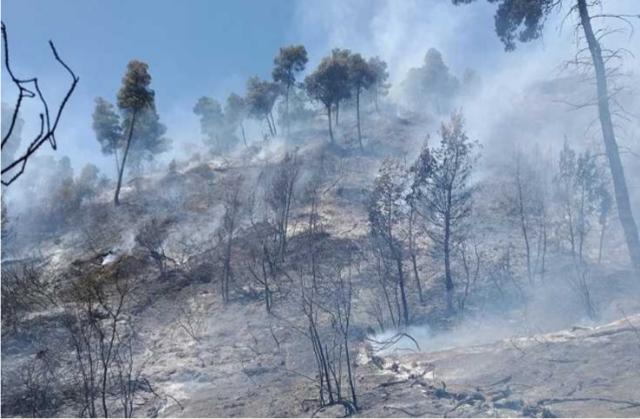 Ήπειρος-Έξι εστίες πυρκαγιάς στο Σκάνδαλο Παραμύθιας