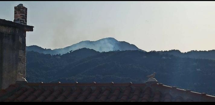 Νέα Δασική πυρκαγιά στην Σάμο