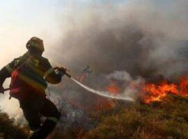 Πυρκαγιά ΤΩΡΑ σε οικοπεδικό χώρο στην Σαλαμίνα Αττικής