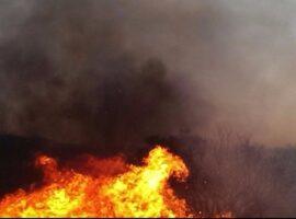 Μεσσηνία:Πυρκαγιά σε αγροτική έκταση.