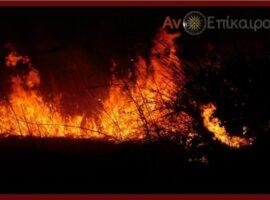 Ημαθία-Πυρκαγιά έξω απο την Καψόχωρα.(βίντεο)