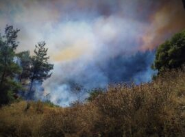 Μεγάλη πυρκαγιά εν υπαίθρω στην Καισαριανή.(Βίντεο)