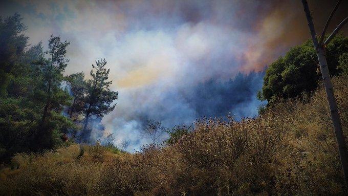 Δασική πυρκαγιά στην Αγία Παρασκευή Πλατανορεύματος Κοζάνης