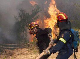 Πυρκαγιά στο Κρυονέρι Αττικής