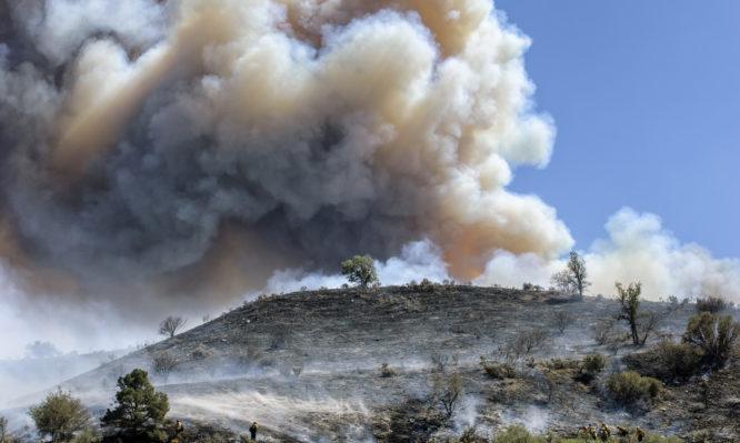 91 Δασικές πυρκαγιές εκδηλώθηκαν το τελευταίο 24ωρο στη χώρα