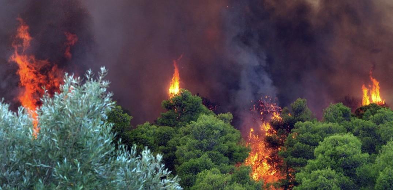 44 Δασικές πυρκαγιές το τελευταίο 24ωρο