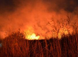 Πυρκαγιά σε χορτολιβαδική έκταση κοντά στην Φωτεινή Καστοριάς