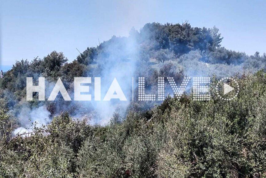 Ηλεια-Πυρκαγιά σε αγροτοδασική έκταση.