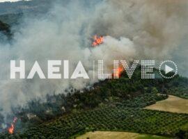 Ηλεια-Σε εξέλιξη παραμένει η πυρκαγιά στο Γούμερο.(φώτο)