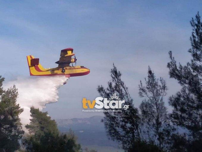 Υπό μερικό έλεγχο η πυρκαγιά στην Εύβοια