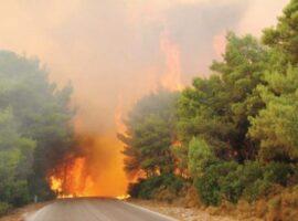 105 Δασικές πυρκαγιές το τελευταίο 24ωρο