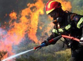Πυρκαγιά σε χαμηλή βλάστηση στην Άνοιξη Αττικής