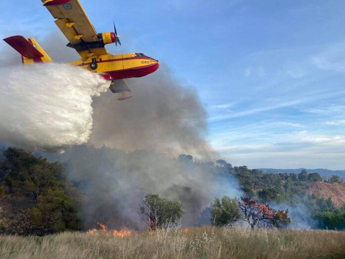 Υπό μερικό έλεγχο η πυρκαγιά σε δασική έκταση στη Νέα Πέραμο (Φώτο)