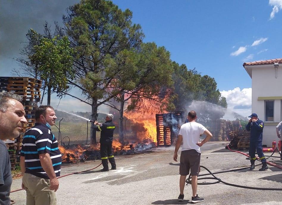 Πυρκαγιά στο μελισσοκομικό συνεταιρισμό Νικήτης στη Χαλκιδική