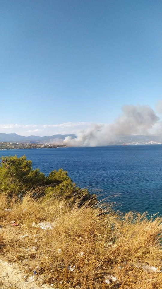 Συναγερμός ΤΩΡΑ για πυρκαγιά στο Kαλαμάκι Κορινθίας (Φώτο)
