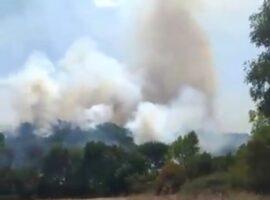 Ενισχύονται οι δυνάμεις στην πυρκαγιά σε δασική έκταση στην Καστοριά