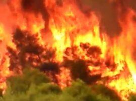 Πυροσβεστικό Σώμα Ελλάδας (Βίντεο)