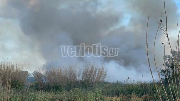 Πυρκαγιά στην Αλεξάνδρεια Ημαθίας