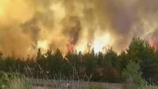 49 Δασικές πυρκαγιές το τελευταίο 24ωρο