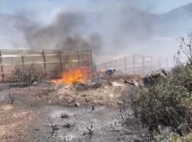 Σύρος: Σύλληψη άνδρα για τη φωτιά στο Βήσσα.(βίντεο)