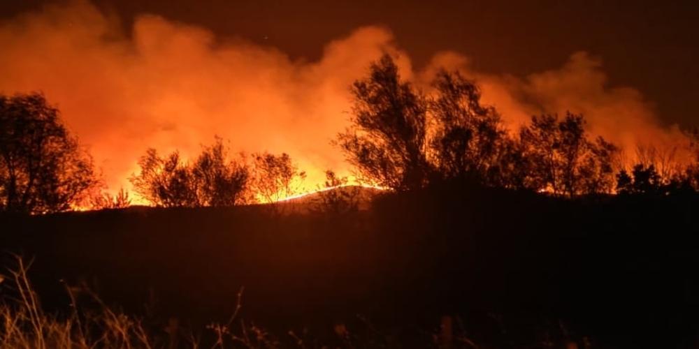33 Δασικές πυρκαγιές το τελευταίο 24ωρο