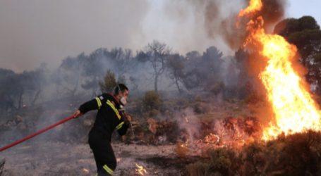 Πυρκαγιά εν υπαίθρω ΤΩΡΑ στον Άλιμο Αττικης