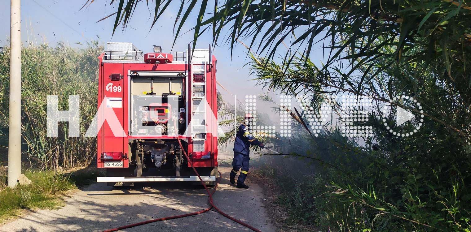 ΗΛΕΙΑ-Πυρκαγιά σε καλαμιές πίσω από το παλιό εργοστάσιο Ceramica