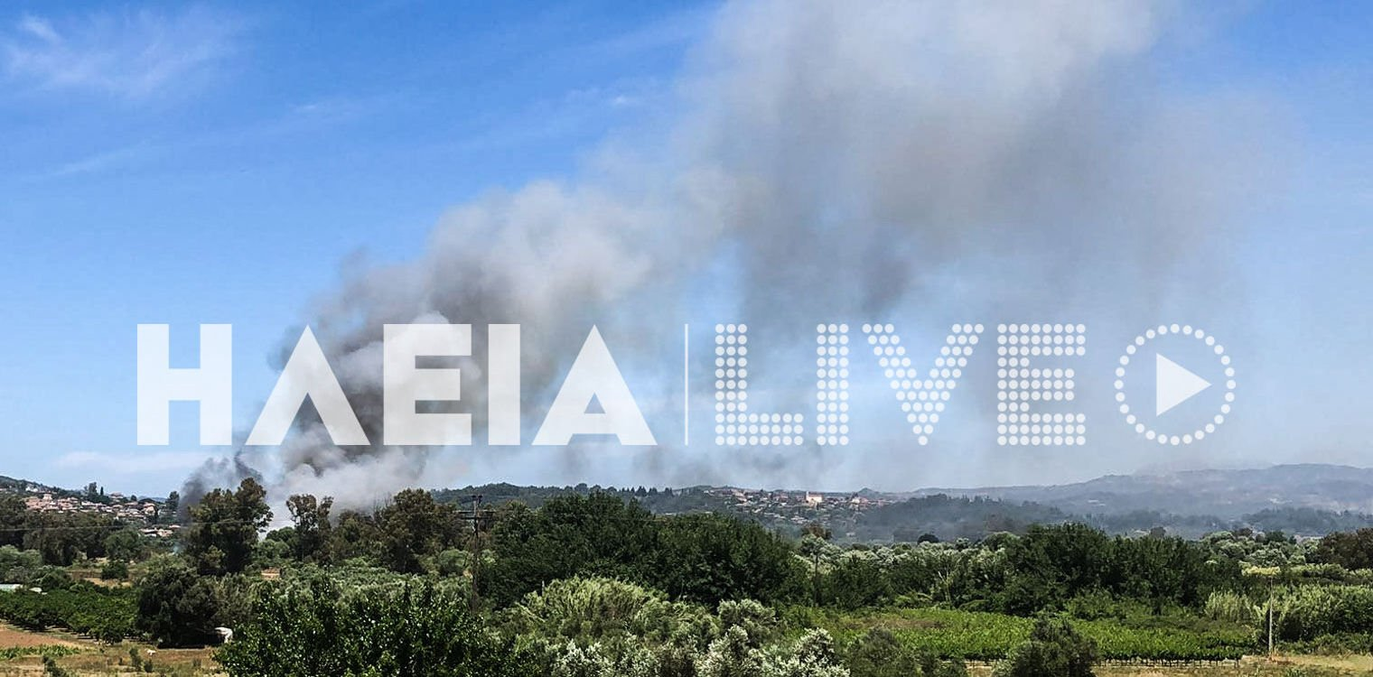 Πυρκαγιά σε αγροτοδασική έκταση στην Σαλμώνη Πύργου
