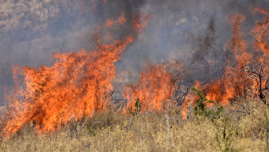 Πυρκαγιά ΤΩΡΑ εν υπαίθρω στης Αχαρνές Αττικής