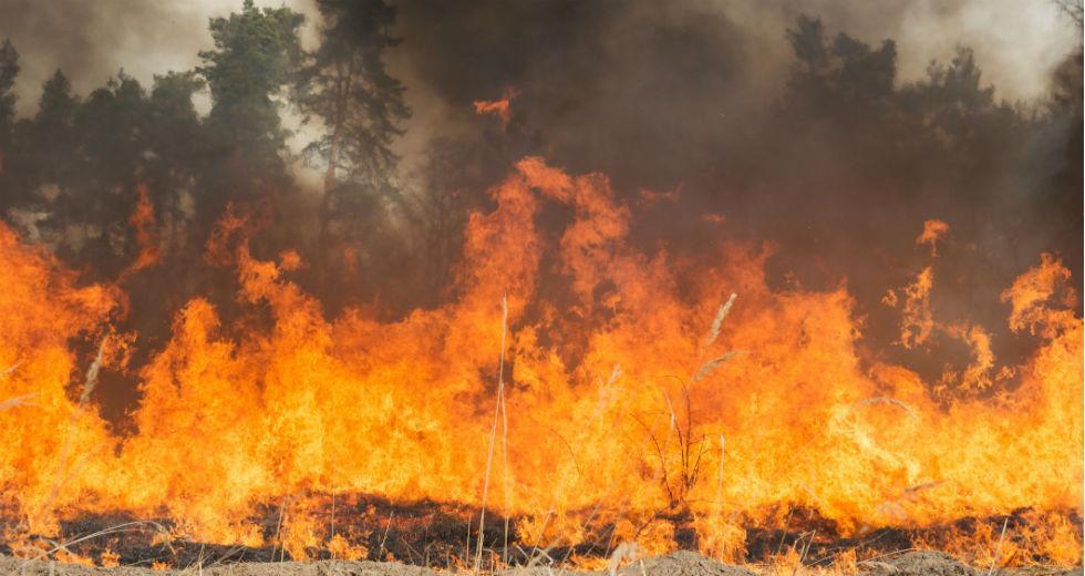 Πυρκαγιά ΤΩΡΑ εν υπαίθρω στο Κορωπί