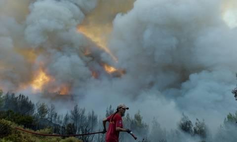 42 Δασικές πυρκαγιές το τελευταίο 24ωρο