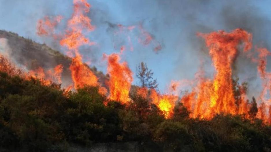 40 Δασικές πυρκαγιές το τελευταίο 24ωρο