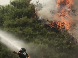 Πυρκαγιά σε δασική έκταση ΤΩΡΑ στην Καστοριά