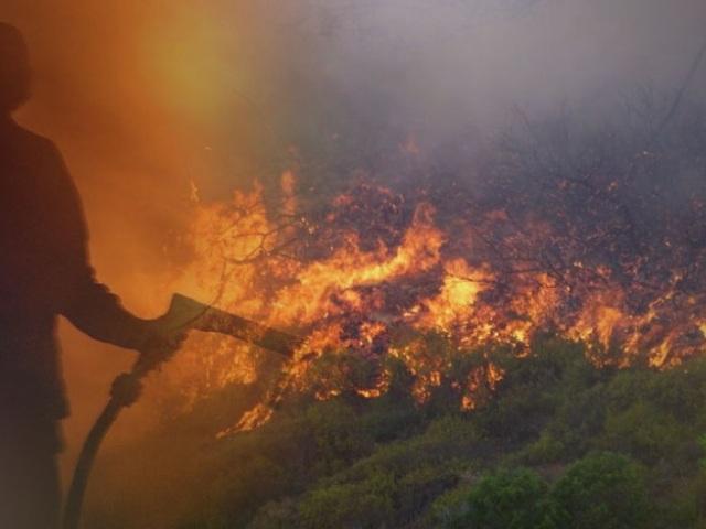 """Επιστολή Πέτσα στους ΟΤΑ: """"Πάρτε μέτρα πρόληψης των δασικών πυρκαγιών"""""""