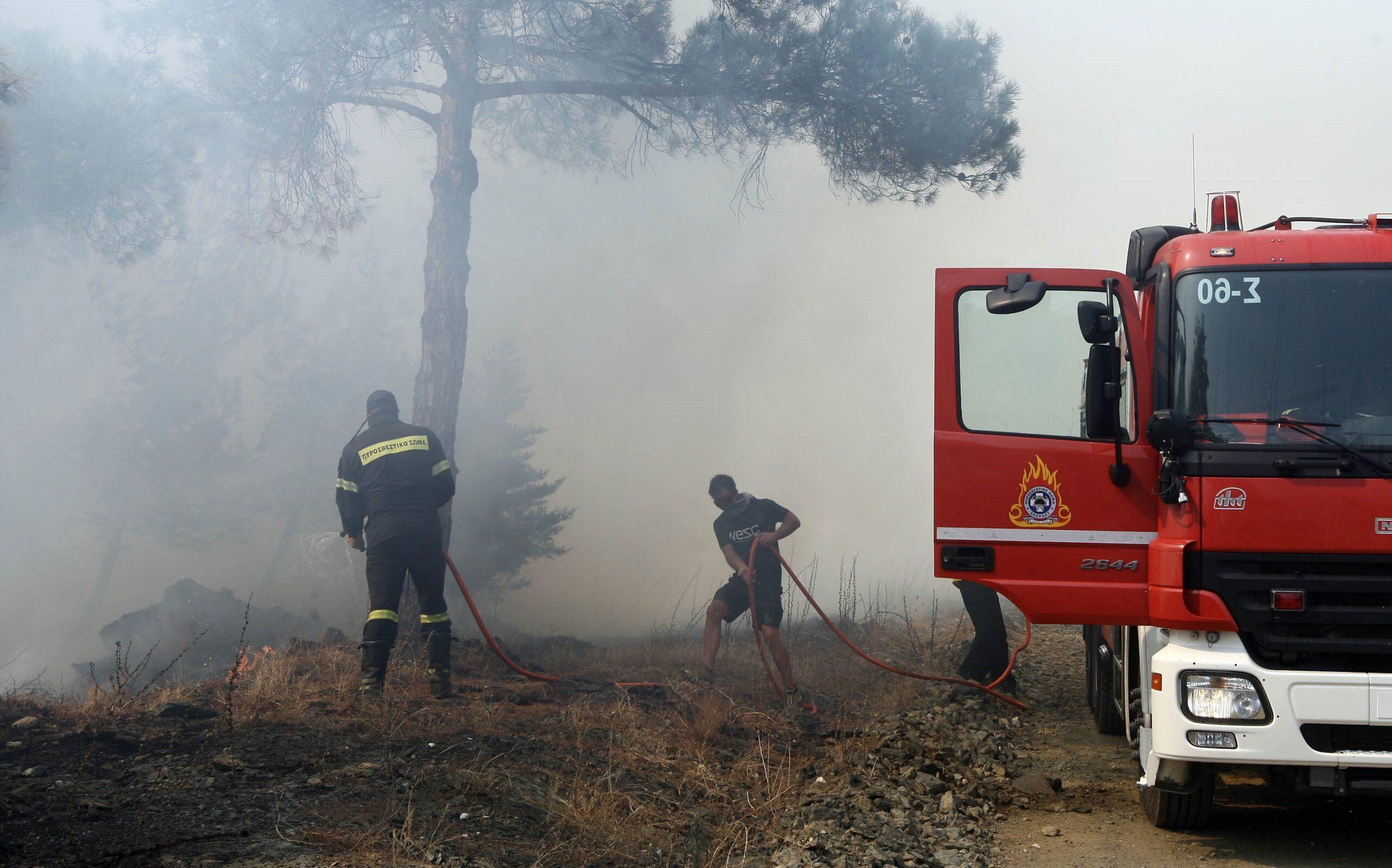 Πυρκαγιά σε δασική έκταση στις Κροκεές Λακωνίας