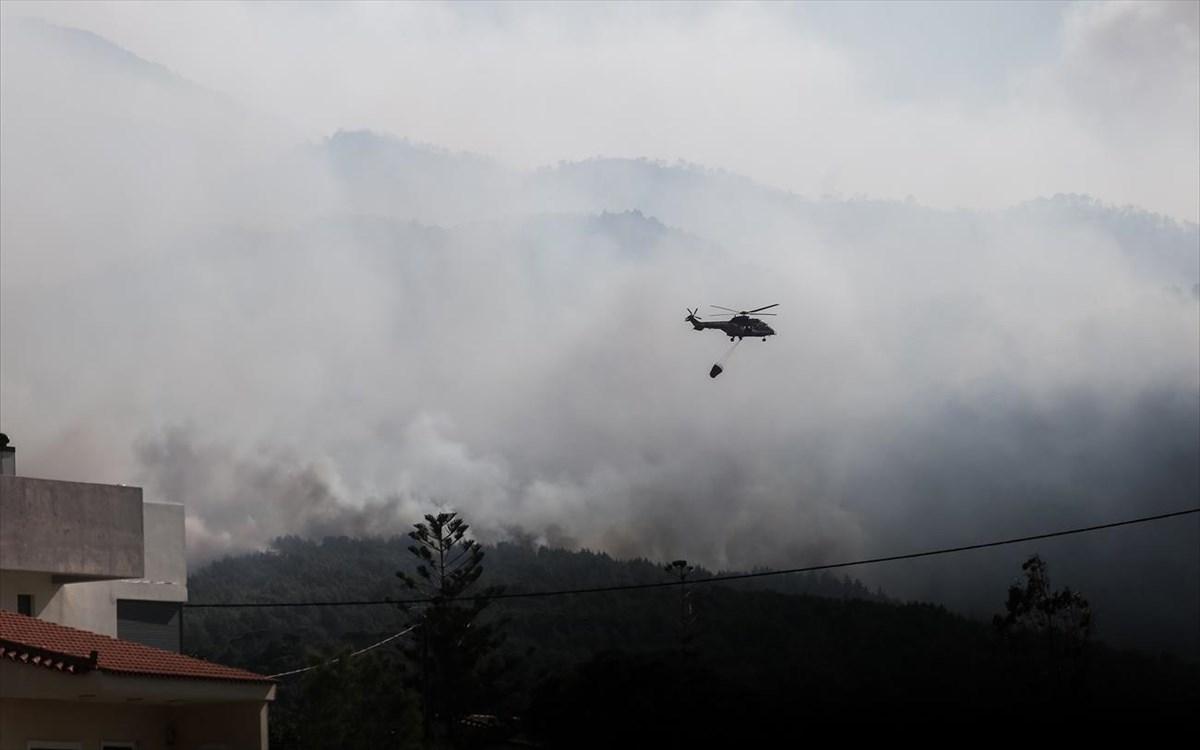 Πυρκαγιά στο Σχίνο: Σε κομμένο ιδιωτικό δασικό δρόμο «σκόνταψαν» οι Πυροσβέστες