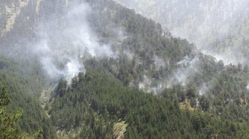 Πυρκαγιές: Η μάστιγα της Ελλάδας