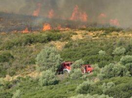 Πυρκαγιά σε δασική έκταση στην Βυσσινιά Καστοριάς
