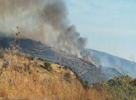 Πυρκαγιά ΤΩΡΑ σε δασική έκταση στο Κρανίδι Αργολίδας