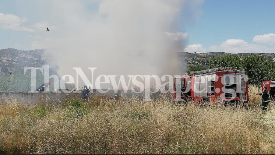 Πυρκαγιά σε έκταση με ξερά χόρτα στο Αλιβέρι Νέας Ιωνίας Βόλου