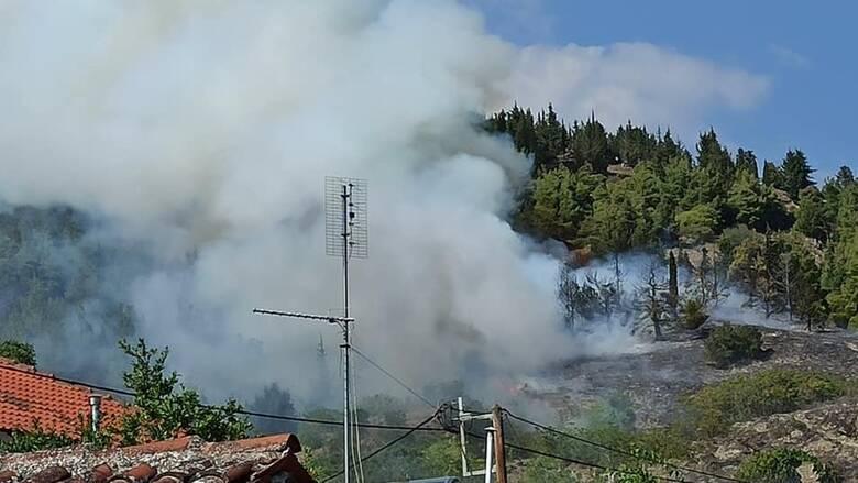 Πυρκαγιά ΤΩΡΑ σε Γεωργική έκταση στην Μεσσηνία