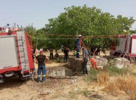 Επιχείρηση των πυροσβεστών για Γεωργαλίδικο άλογο που έπεσε σε πηγάδι (Βίντεο)