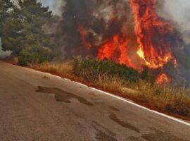 Πυρκαγιά ΤΩΡΑ στην περιοχή της Λευκίμμης στην Κέρκυρα