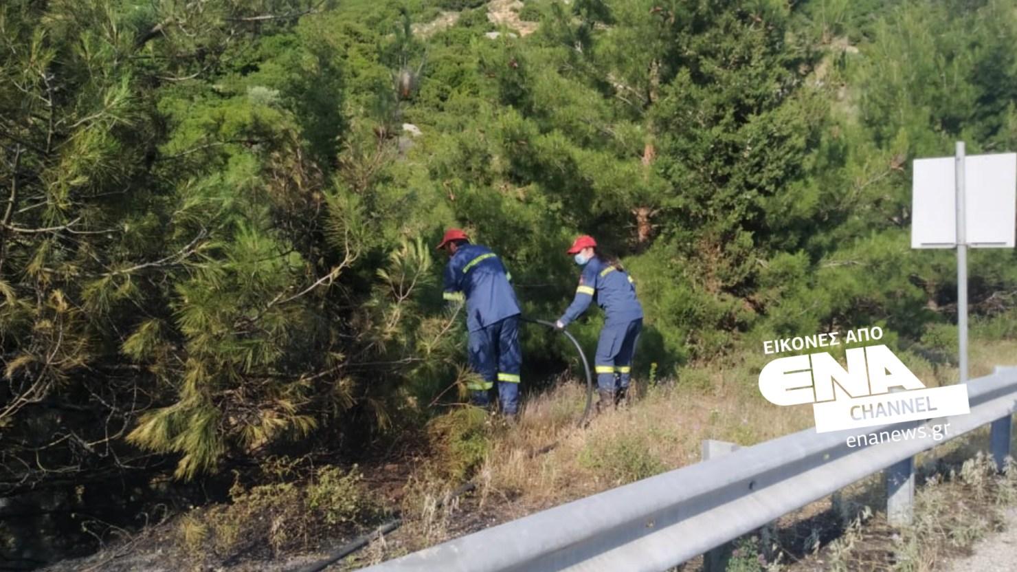 Πυρκαγιά σε ξερά χόρτα στην Εγνατία Οδό της Καβάλας (Φώτο)