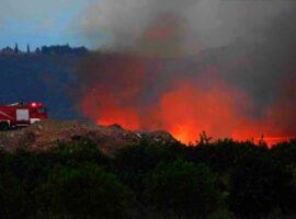 Δασική πυρκαγιά ΤΩΡΑ στα Μέγαρα Αττικής