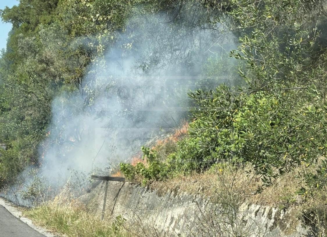 Πυρκαγιά σε δασική έκταση στην Τρουμπέτα Κέρκυρας