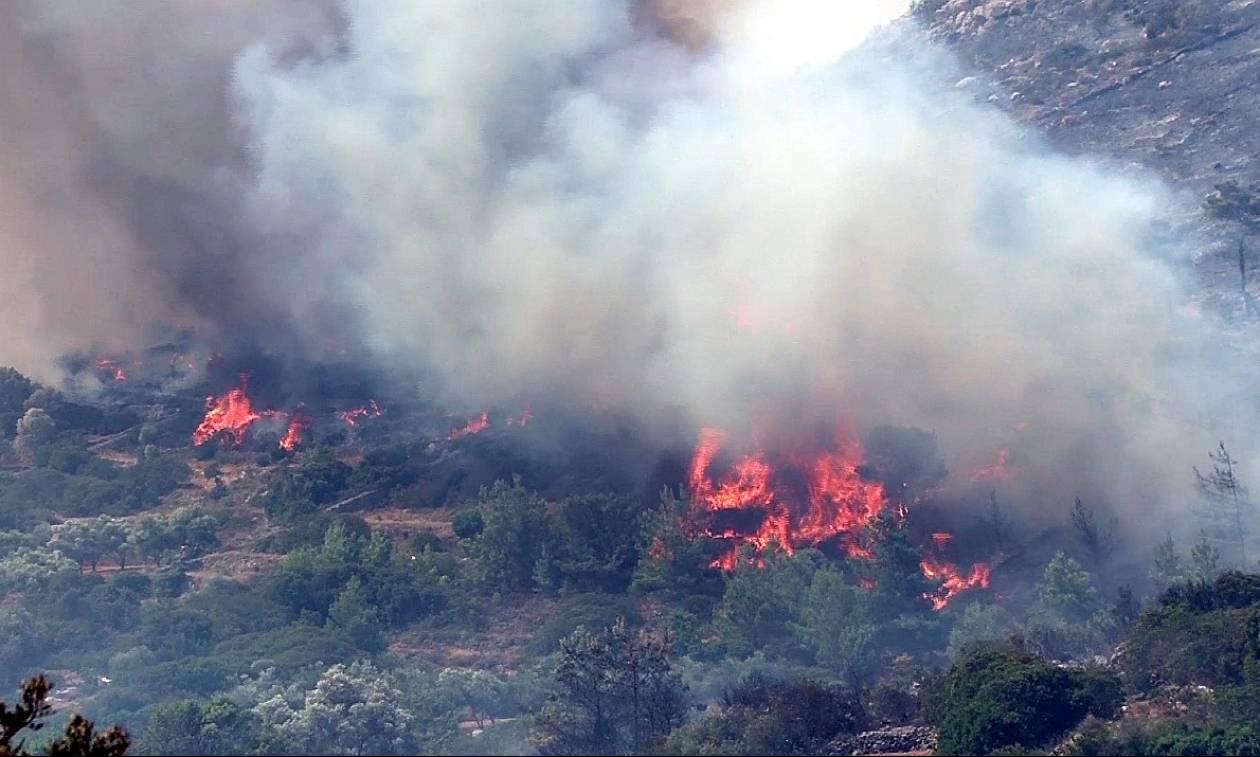 Διώξεις για τη φονική πυρκαγιά της Χίου - Πόρισμα - «φωτιά»