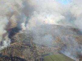 Πυρκαγιά ΤΩΡΑ σε δασική έκταση στην Αταλάντη Φθιώτιδας